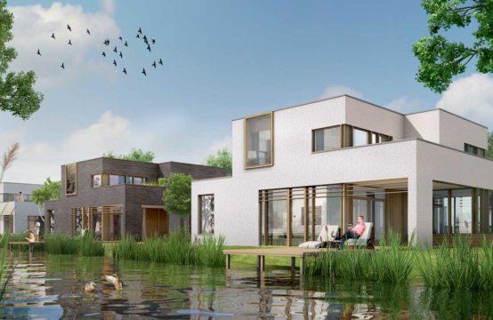 Oeverlibel Rietwijk
